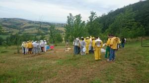 Apiario Didattico Riccia 2016