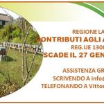Banner piccolo facebook Bando 1308 2017 Lazio